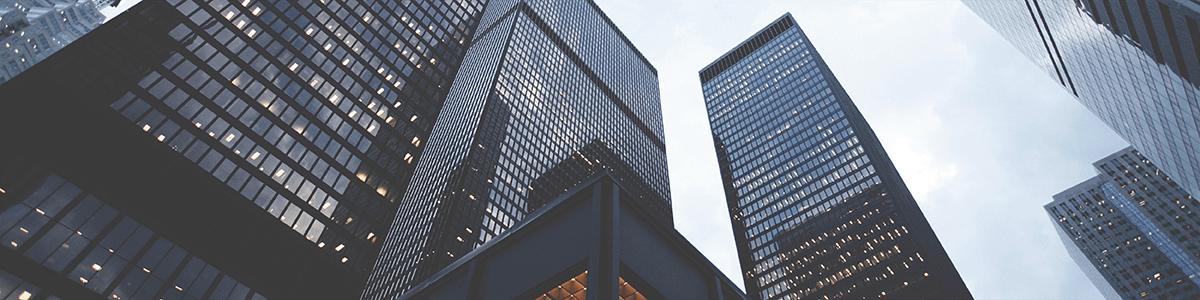 Enterprise-level financial company