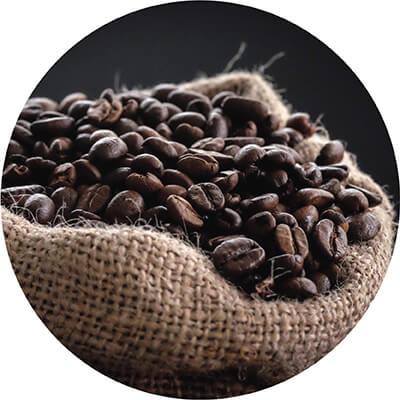 Culture & Coffee