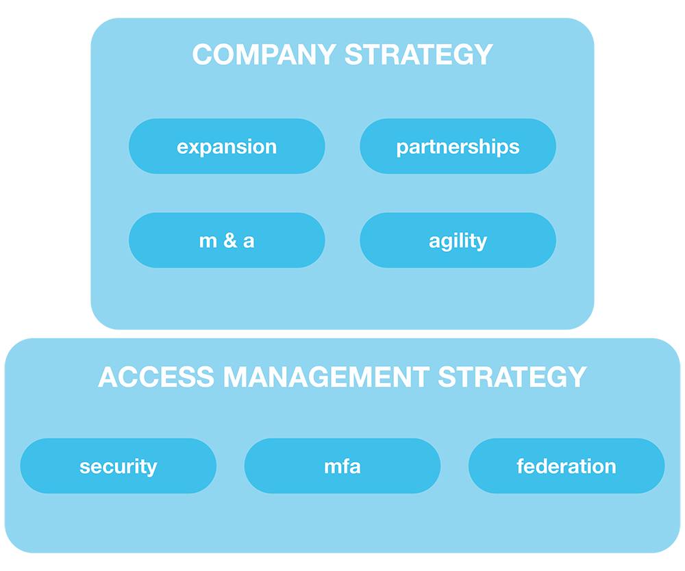 Company strategy and access management strategy