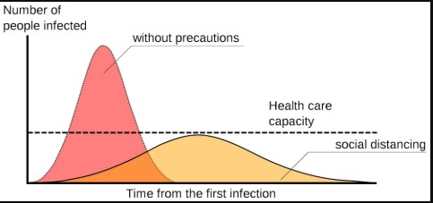 Data literacy, understanding coronavirus flatten the curve model