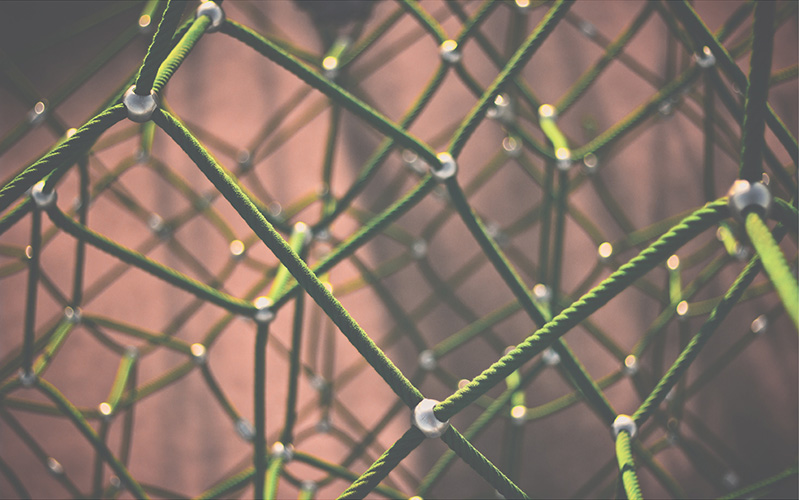 Web/Network